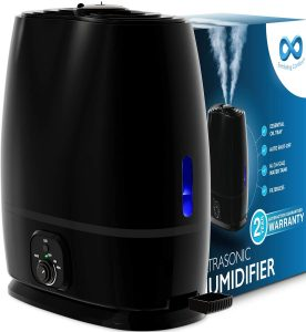 Can You Put Essential Oils in Your Humidifier?